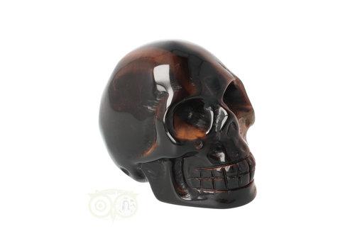 Tijgeroog schedel  Nr 14