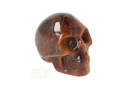 Tijgeroog schedel  Nr 15