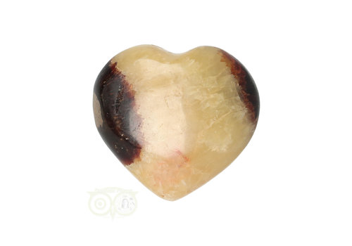 Septarie hart ± 3 cm Nr 24
