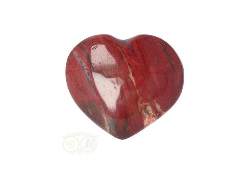 Versteend hout hart ± 3 cm  Nr 53