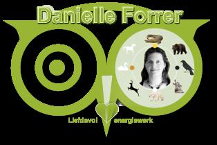 Edelstenen Webwinkel - Webshop Danielle Forrer