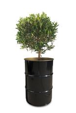 Barrelkings Blumenkübel industriell 60 Liter Ölfasse