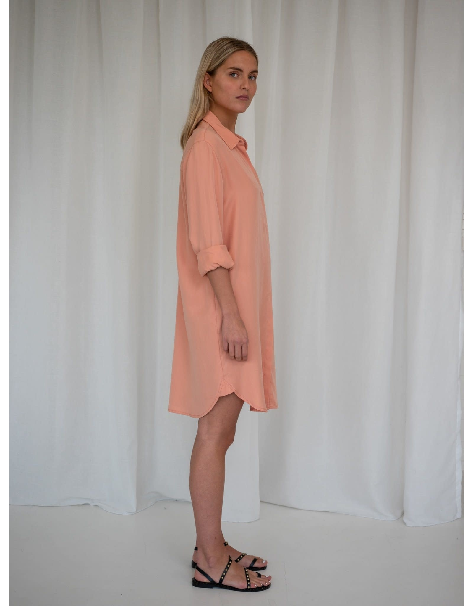 LIV THE LABEL SHIRT DRESS MONTEVIDEO