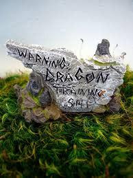 "Fiddlehead ""Warning dragon training site"" Sign"