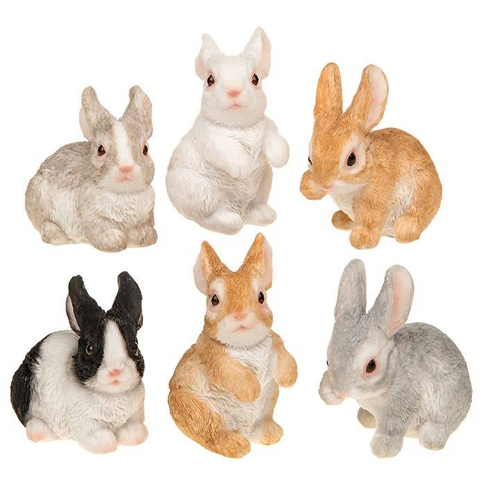Image of: Wild Joe Davies Bright Eyes Baby Rabbit Celebrations And Toys Bright Eyes Baby Rabbit Celebrations And Toys