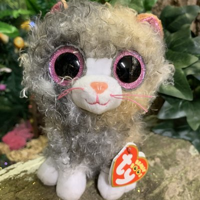 Ty Beanie Boo - Scrappy the Curly Haired Cat