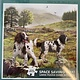 1000pcs - Spaniels On The Moor - Square Puzzle