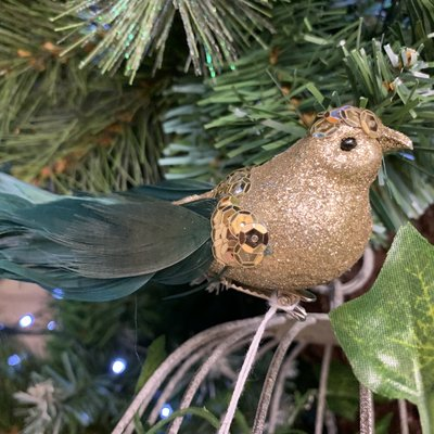 Gisela Graham Gold Glitter Bird with Green Feathers Clip On Decoration