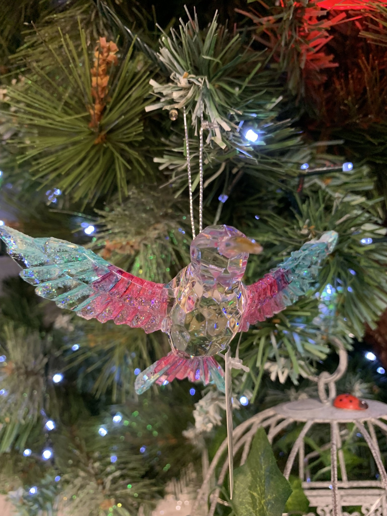 Multi Colour & Clear Hummingbird Wings out Hanging Decoration
