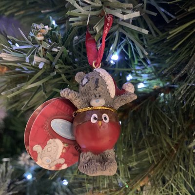 Tatty Ted Me to You - Tatty Ted in Robin Hanging Decoration