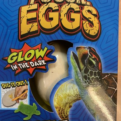 Hti Fossil Egg - Glow in the Dark Turtle