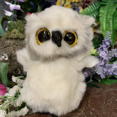 Ty Beanie Boo - Austin the Owl