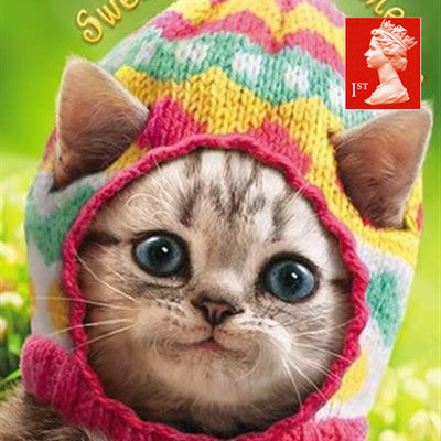 Avanti Easter Greeting Card with First class Stamp - Kitten in Knitted Egg Cap