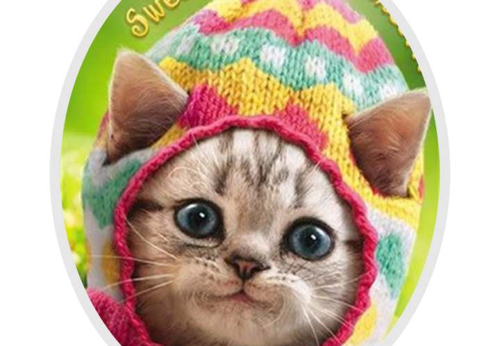 Cat in Wooly Hat