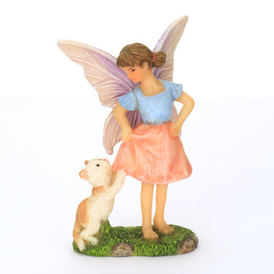 Fairy Playing with Cat