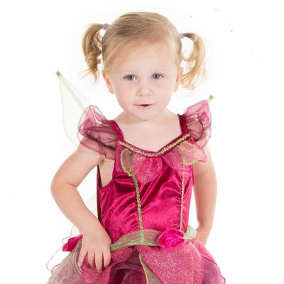 Deluxe Scarletta Fairy Costume - Age 2/3 years