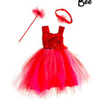 Garnet Fairy Set Costume - Age 2/3 years