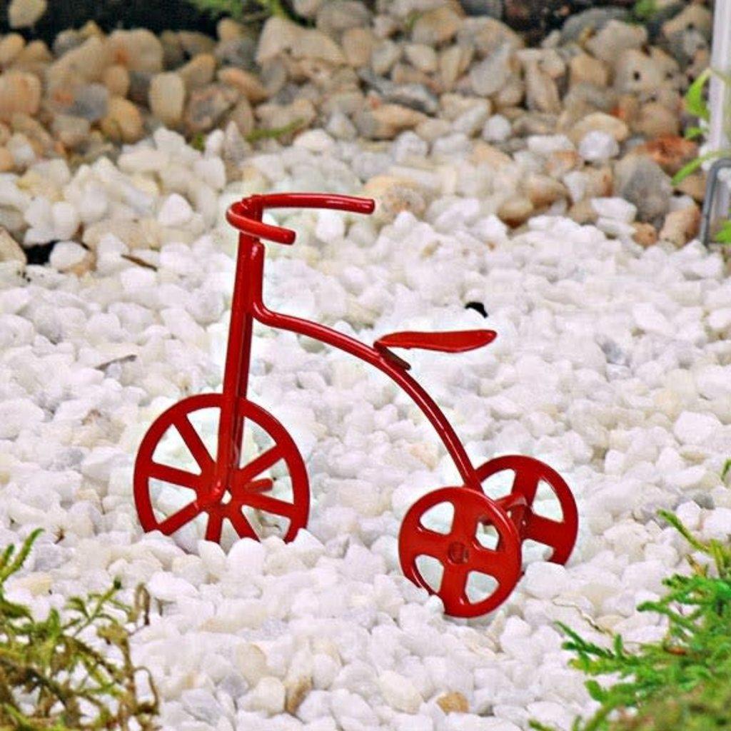 Fairy Red Trike