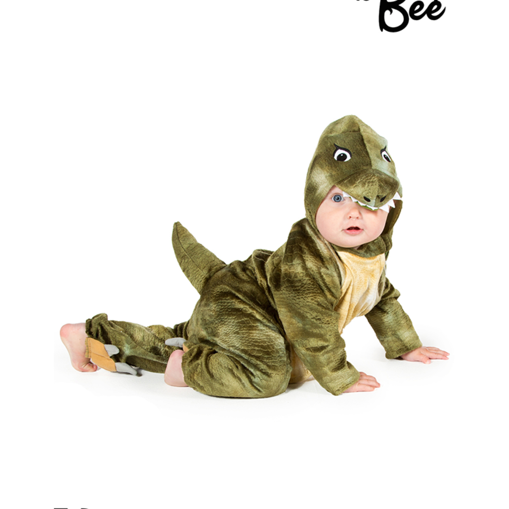 Baby T- Rex Costume - Age 18/24 mths