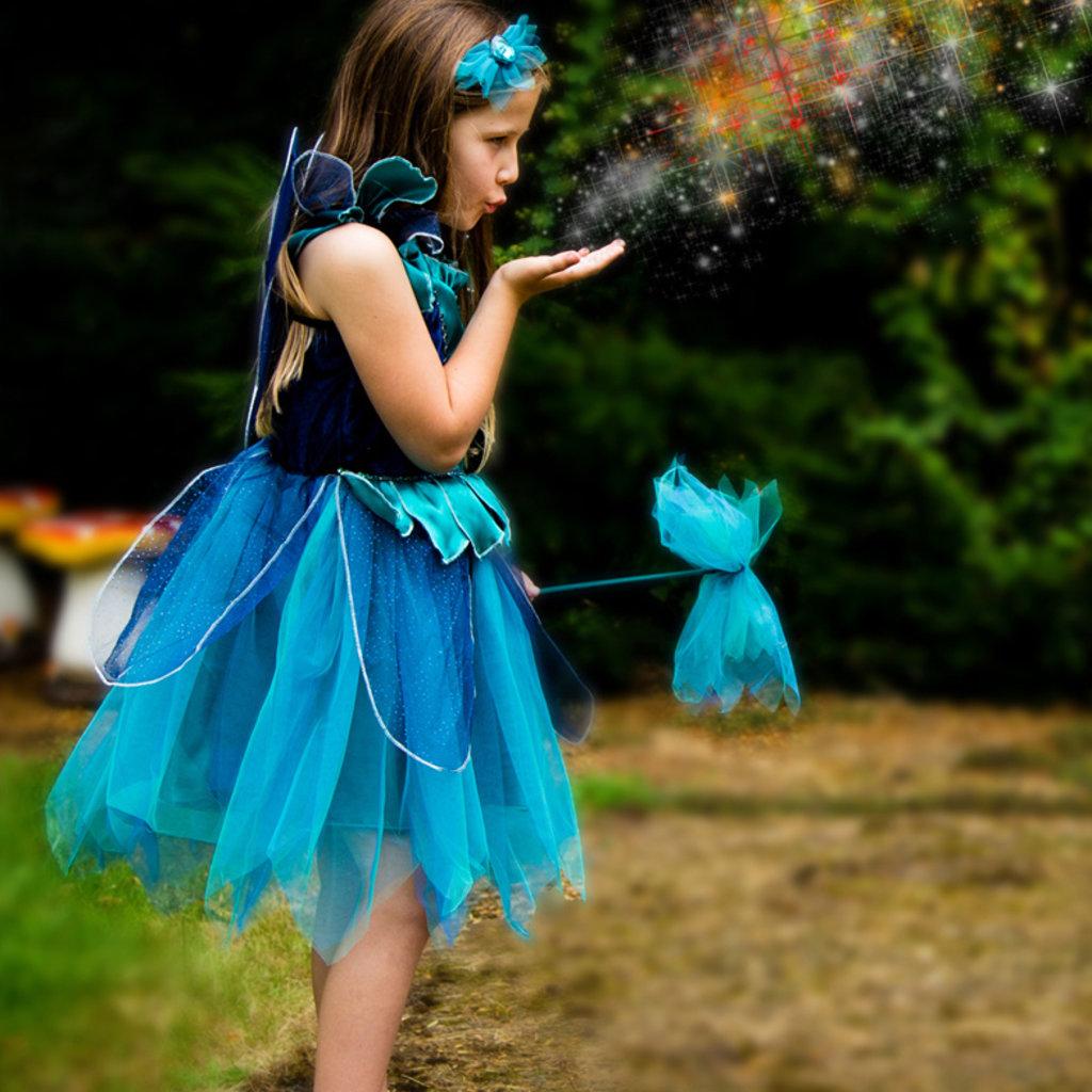 Sapphire Fairy Costume Set - Age 3/4 years