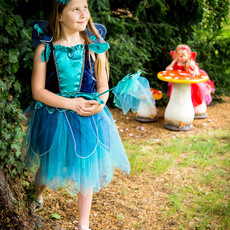 Sapphire Fairy Costume Set - Age 5/6 years