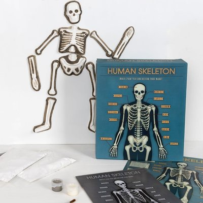 Human Skeleton Fridge Magnet