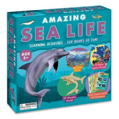 Amazing Activity Set - Sea Life