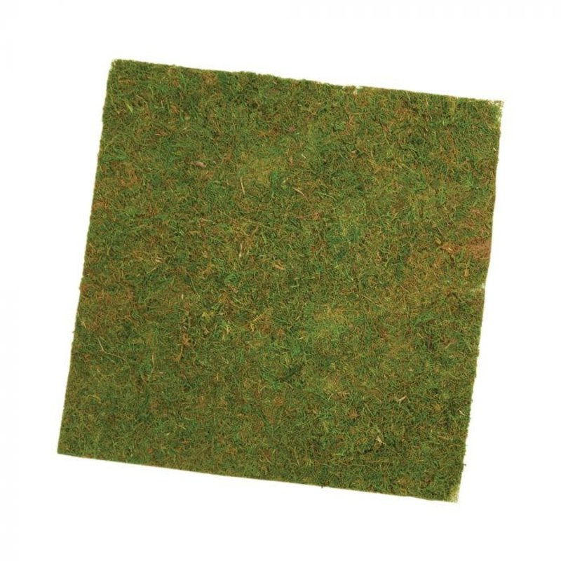 Oasis Mossed Sheet Square
