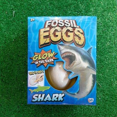 Hti Fossil Egg - Glow in the Dark Shark