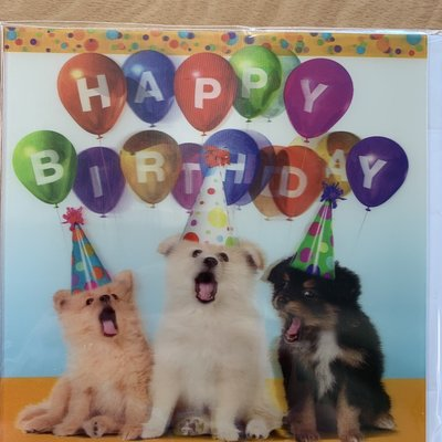 Up Close 3D Effect Birthday Dogs in Party Hats - Card