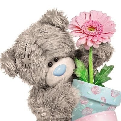 Me to You 3D Effect Bear with Pot Plant Birthday Card