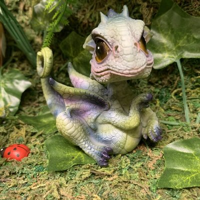 Alator Giftware Curious Hatchling Dragon - C
