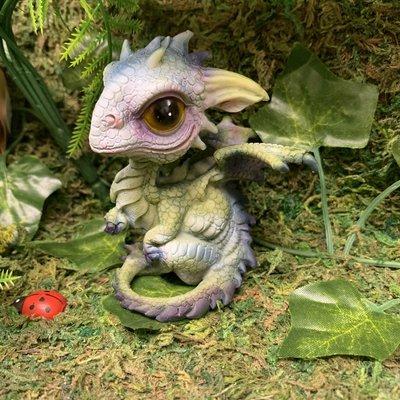 Alator Giftware Curious Hatchling Dragon - B