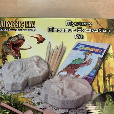 Mystery Dinosaur Excavation Kit