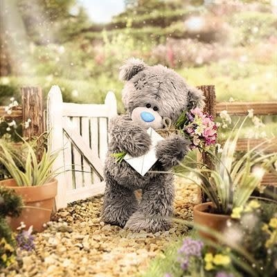 Me to You 3D Effect Bear with Envelope Card