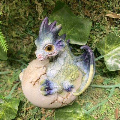 Alator Giftware Dragon Hatchling Emergence - B
