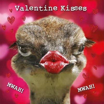 Kissing Emu Valentines Card