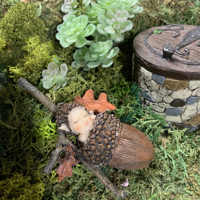 Fiddlehead Fiddlehead - Acorn Baby
