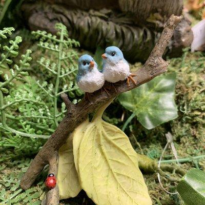 Fiddlehead Fiddlehead - Twin Bluebirds on Branch