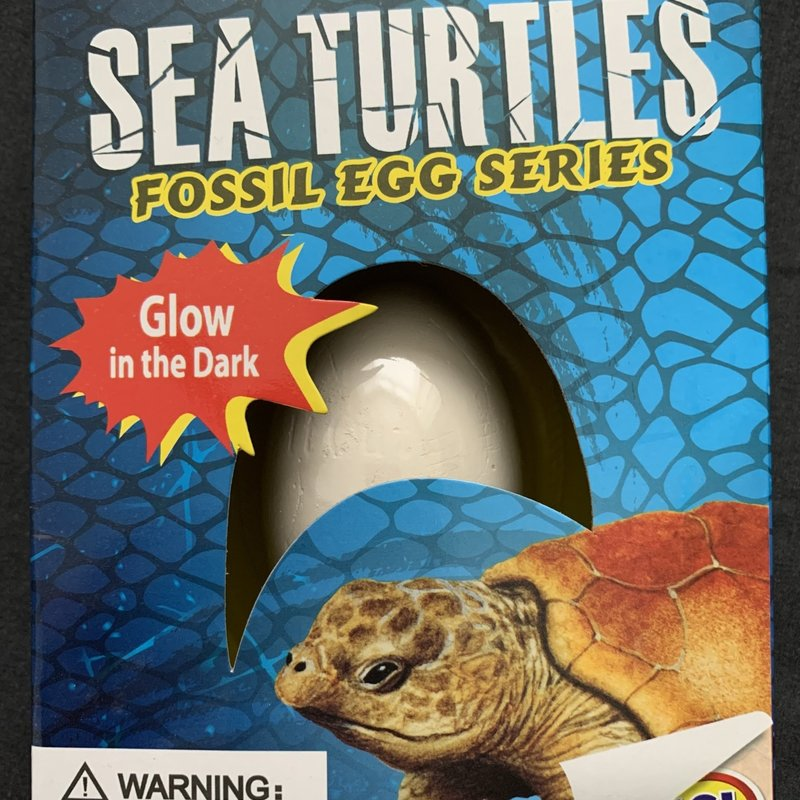 Sea Turtles Fossil Egg Series - Glow in the Dark