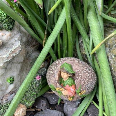 Woodland Knoll Woodland Knoll - Hiding Place Fairy