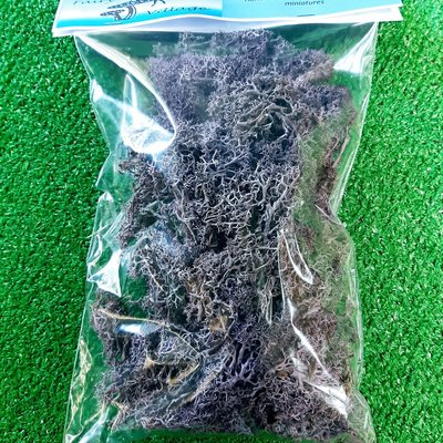 Fairy Village Moss Bag 50g