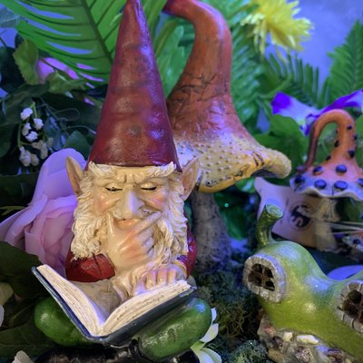 Theo Gnome Sitting with Book