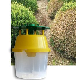 Brimex Biobest Buxusmot feromoonval set