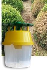 Brimex Biobest Buxus rups bestrijden met aaltjes Carpocapsae System