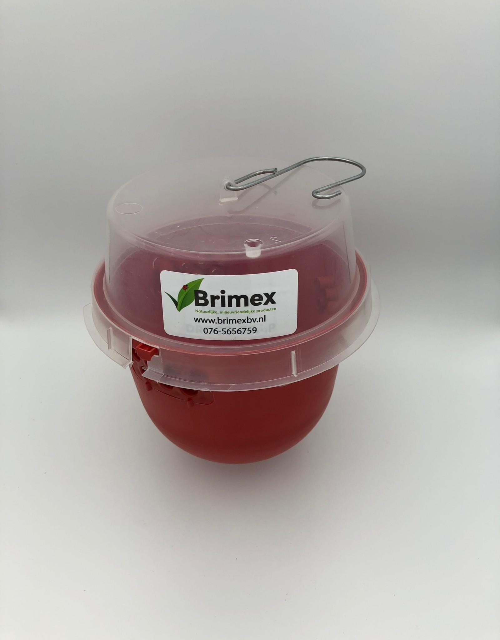 Brimex Biobest Bestrijding fruitvlieg met val Droso Trap