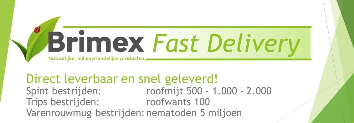 Brimex Fast Delivery