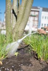 Brimex Innogreen BioNitro® zorgt voor groei, kleur, activering van slapende ogen en zorgt voor gezonde groei.