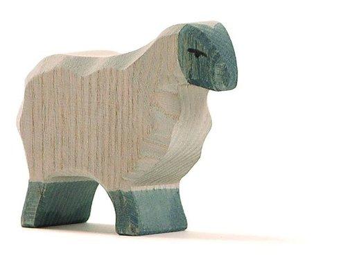 Ostheimer Moorland Sheep 11752