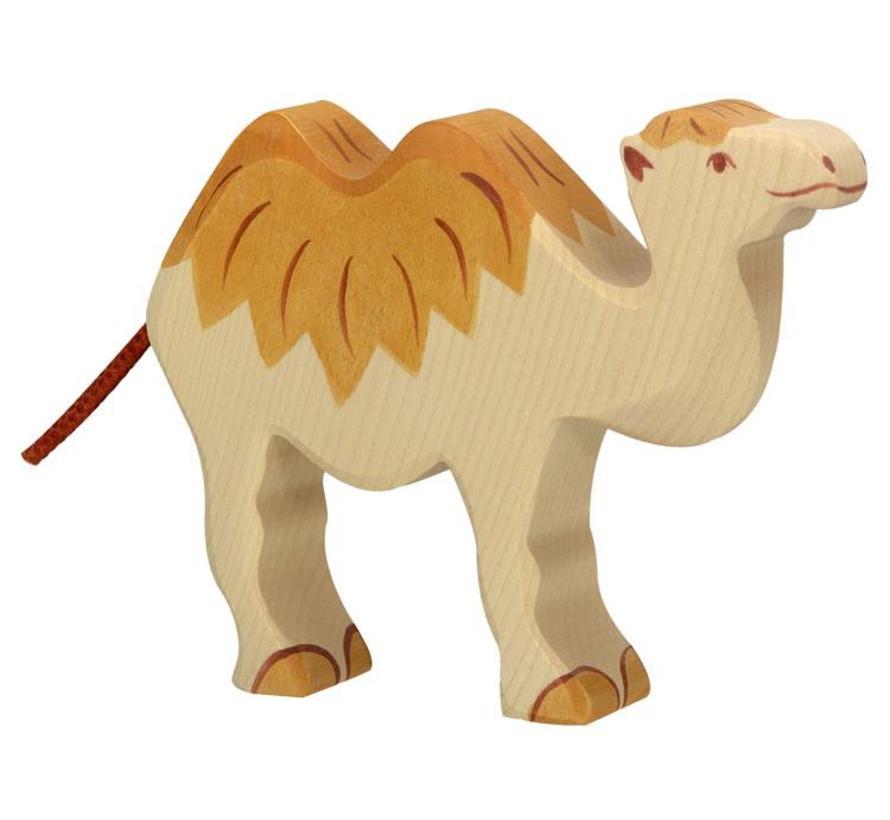 Camel 80164